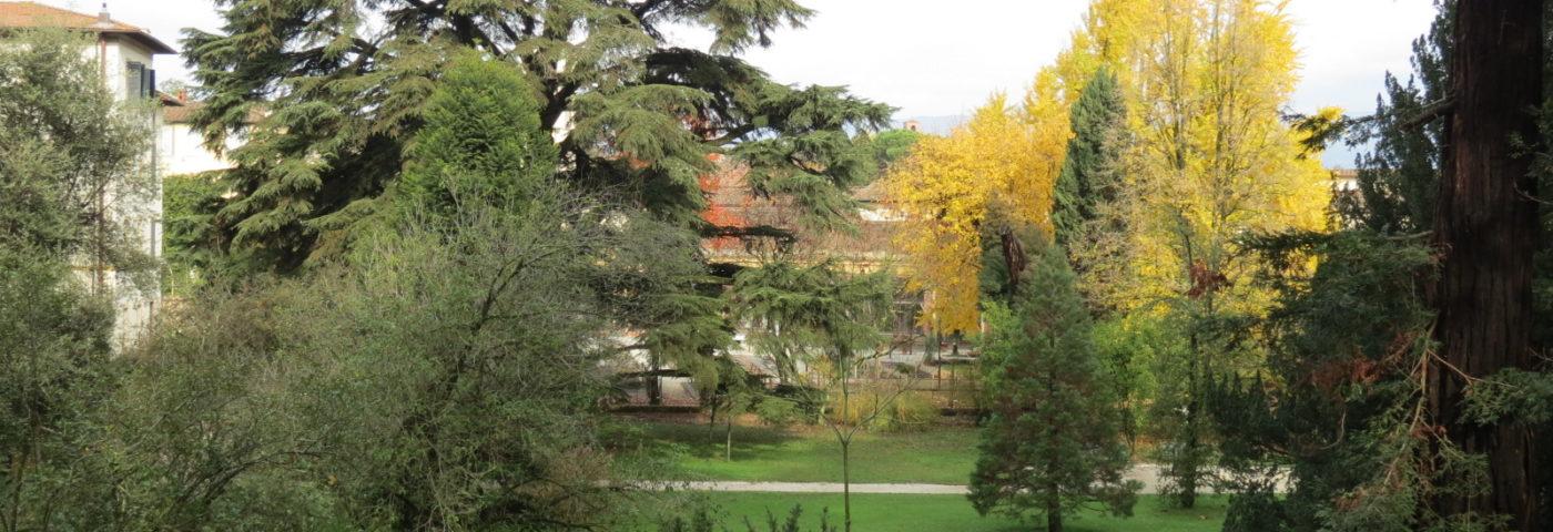 La musica e i luoghi – Testimoni silenziosi, la storia dell'Orto raccontata dagli alberi